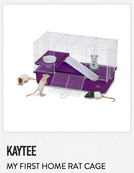 Kaytee My First Home Rat Cage - Not appropriate size wise for rats. Fine as a carrier.