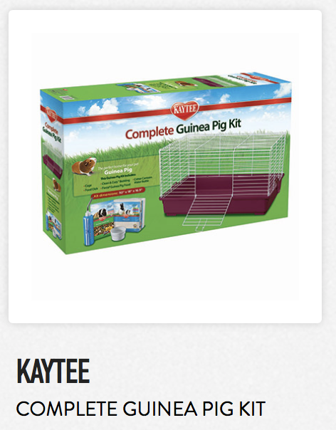 Kaytee Complete Guinea Pig Kit - Not appropriate size wise for rats. Fine as a carrier.