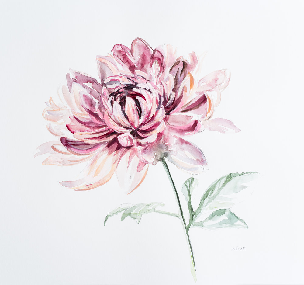 "Dahlia    18x18""  Acrylic on paper  Sold"