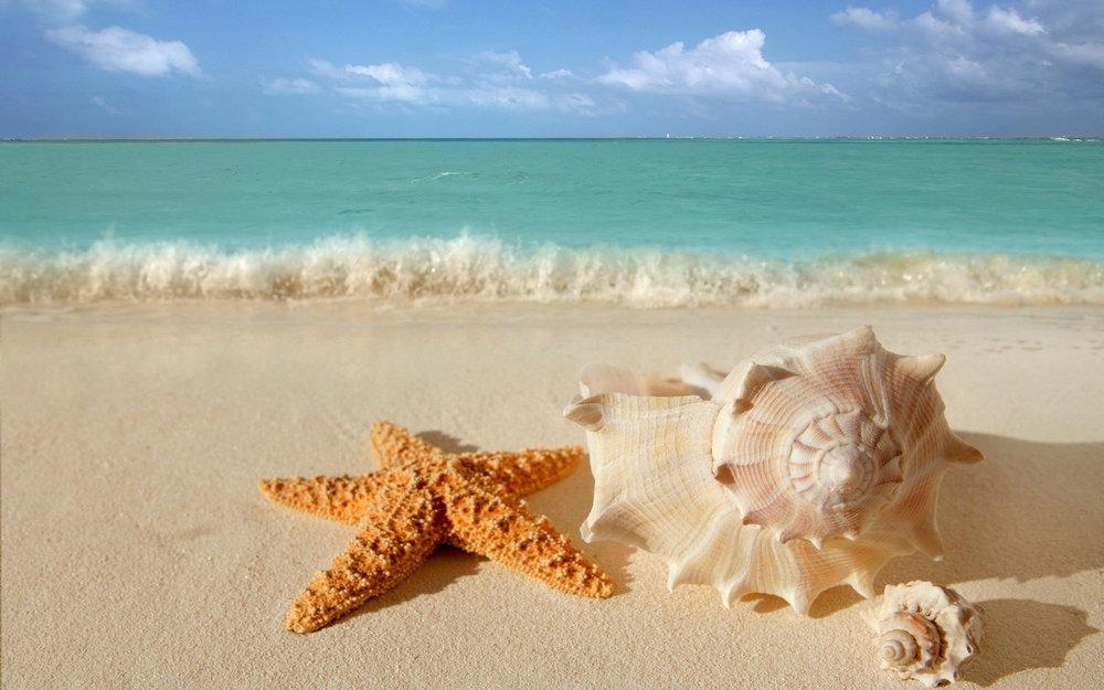 belleair-beach.jpg