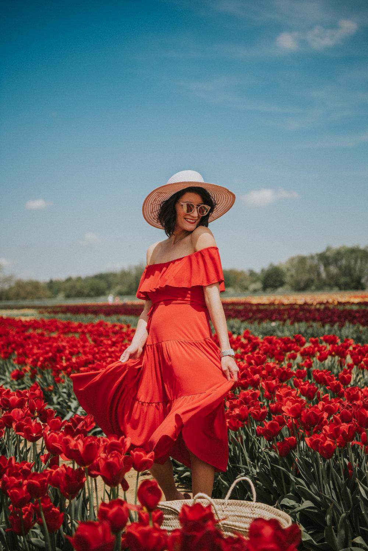 Tulips-5.jpg