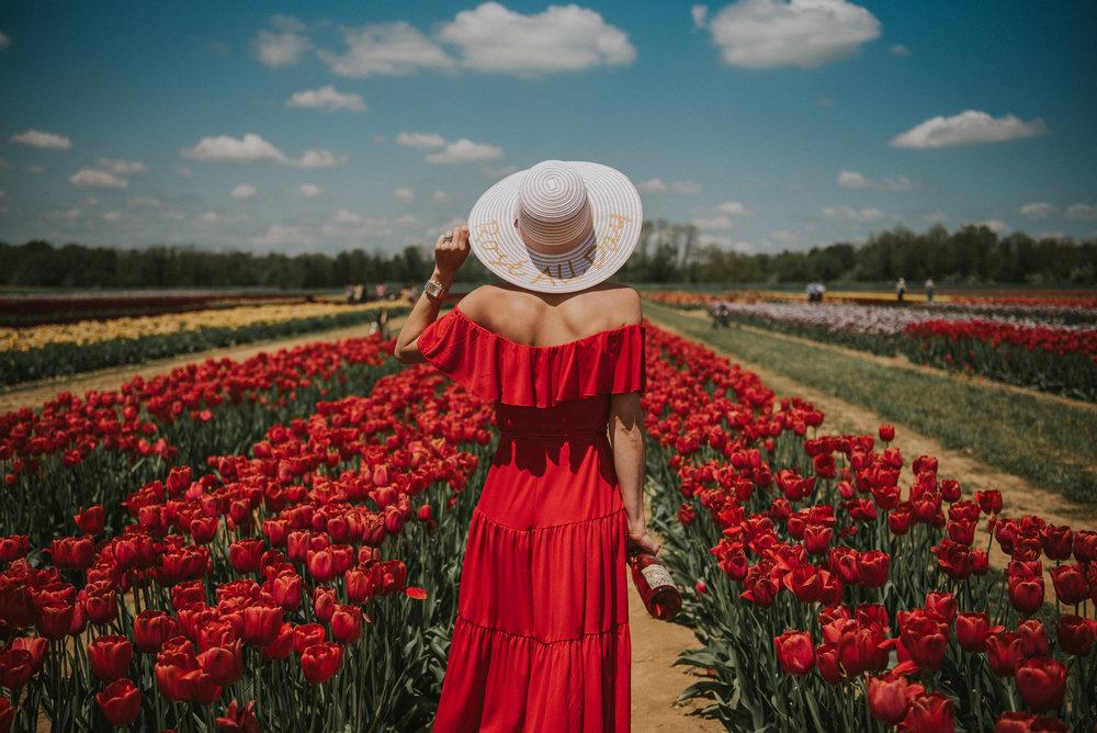 Tulips-41.jpg
