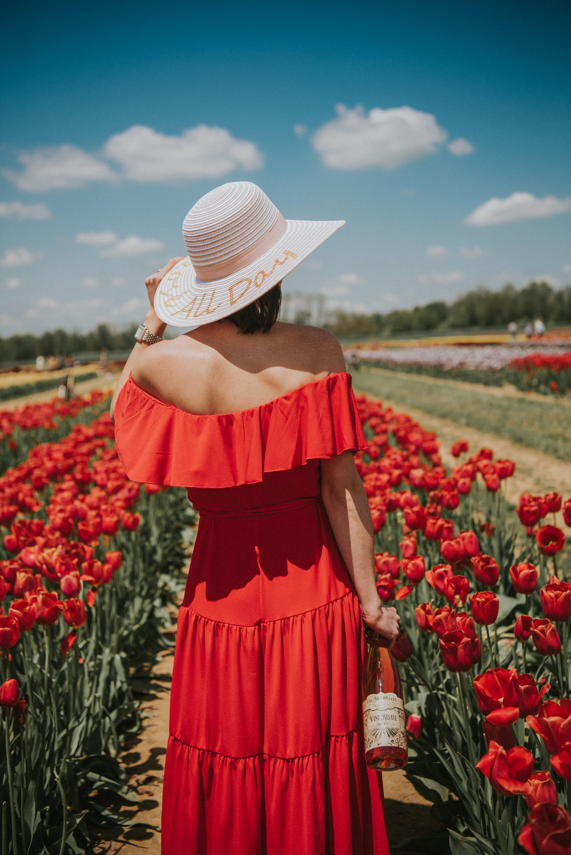 Tulips-44.jpg