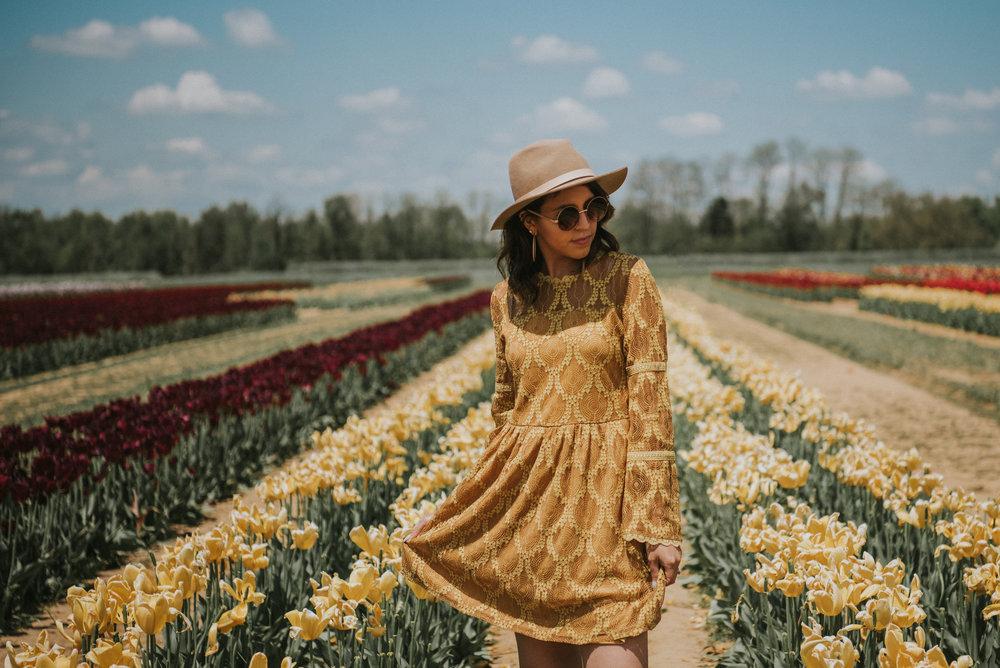 Tulips-31.jpg