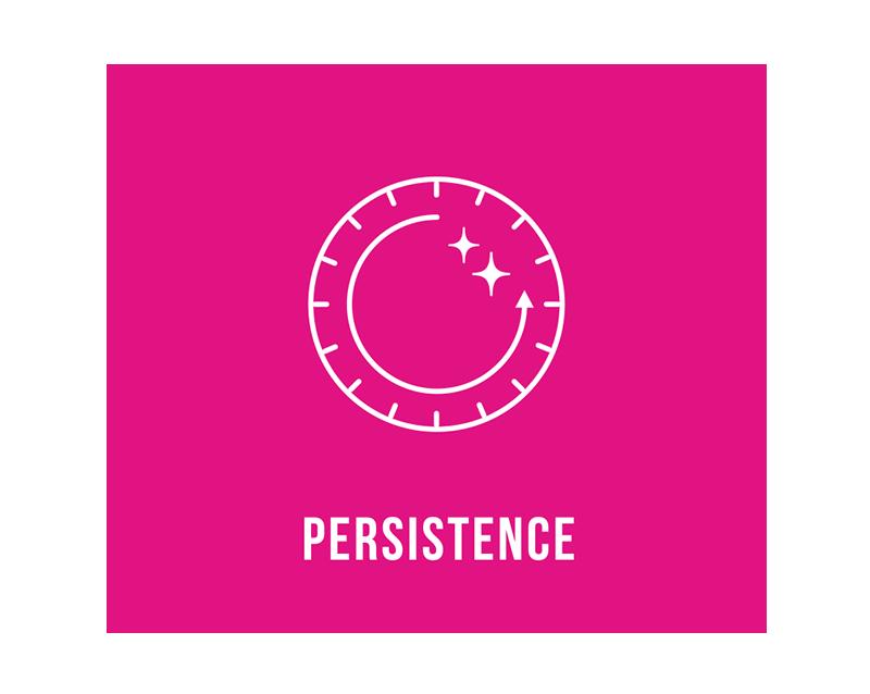 持続性 / PERSTENCE 反射効果は使用から週間程度持続します。パーマネントメタリックのみは半永久的に効果を発揮します。