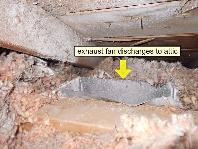 Home Inspection Calgary Exhaust fan discharging into attic!