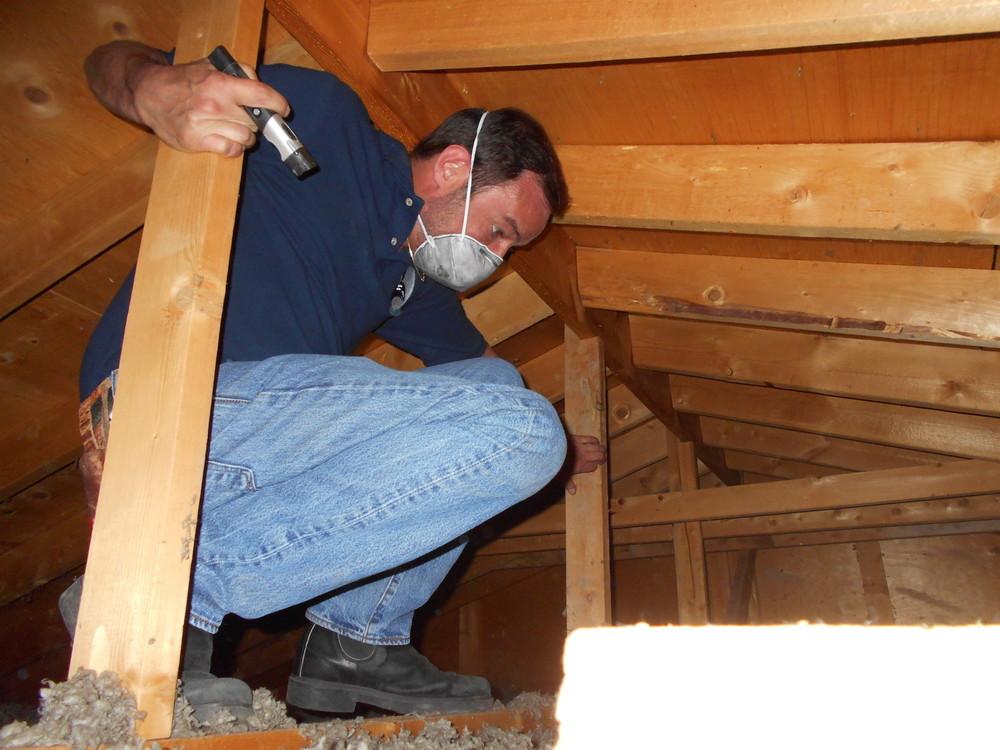 Checking deep into the attic