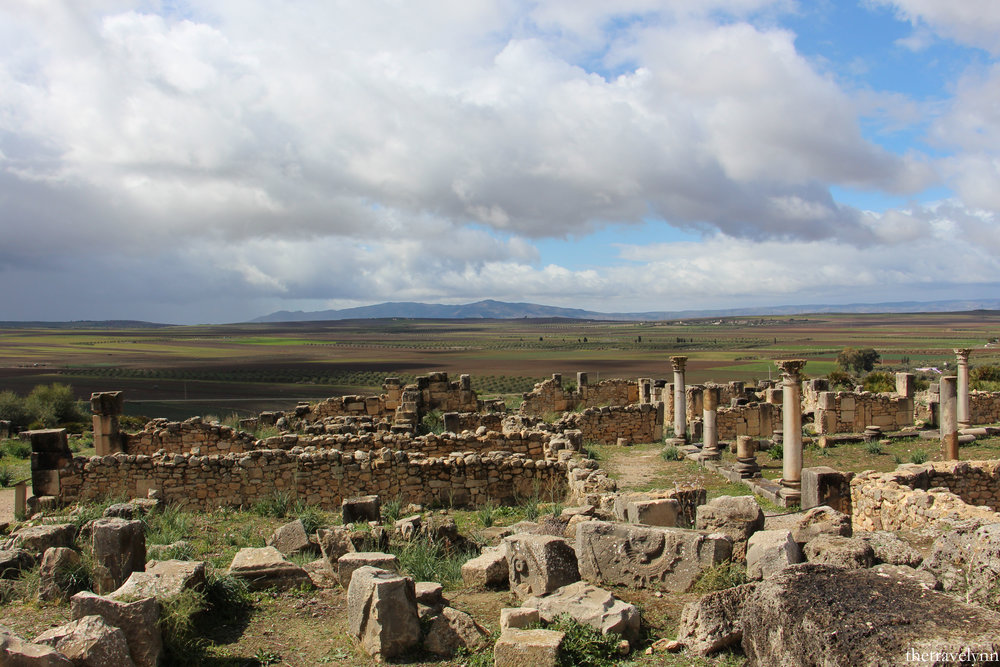 volubilis wallpaper