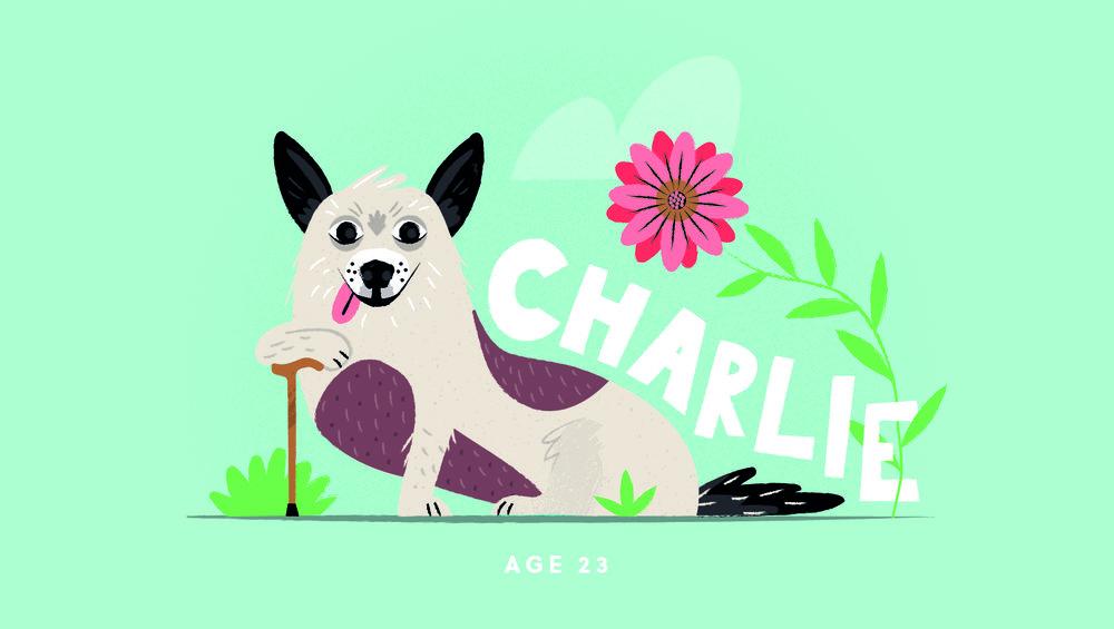 Charlie@3x-100.jpg
