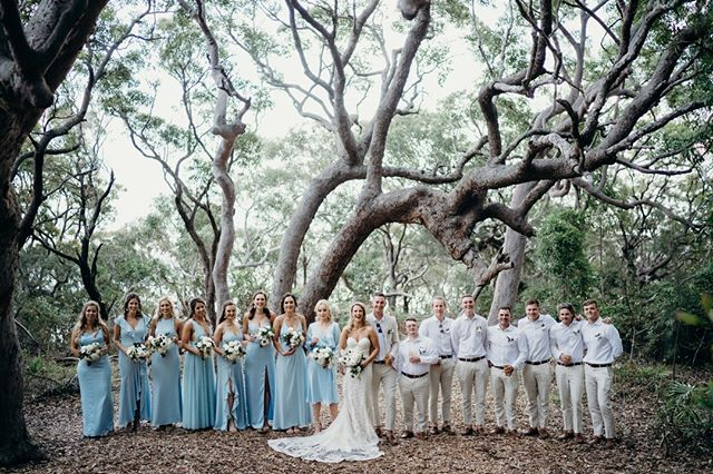 Eliza + Tim // Wedding // Palm Beach⠀ .⠀ 📍 @dunespalmbeach⠀ 🎉 @dovetail_celebrants⠀ 💐@_ellebore⠀ 💄 @makeupbykatrinad⠀ 🎼 @event_entertainers⠀ 🌟 @timbermilldesigns⠀ 📜 @daysliketheseevents⠀ 💓 @thehutchweddingandevents⠀ .⠀ .⠀ .⠀ .⠀ .⠀ .⠀ #sydneyengagement #sydneyengagementphotographer #sydneyengagementphotography #sydneyengagementphotosession #folkandfollow #realengagementsession #realengagementphotos #sydneyprewedding #sydneypreweddingphoto #sydneypreweddingphotographer