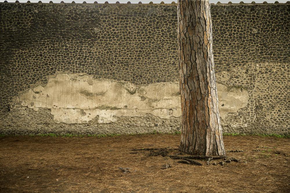 Pompeii Court