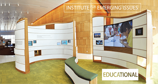 Institute for Emerging Issues