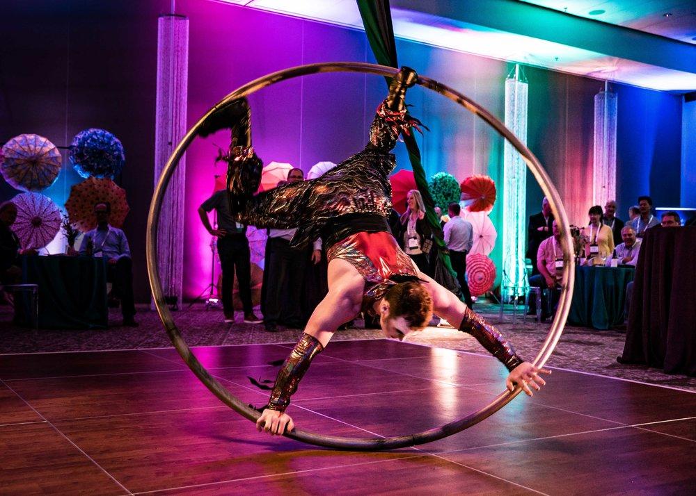 Cirque_Du_Honeywell-2.jpg