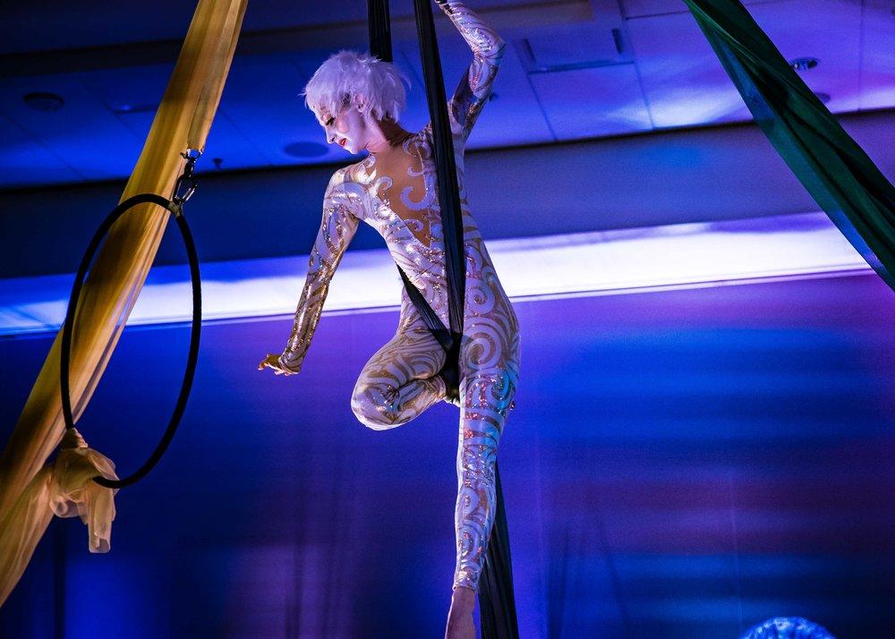 Cirque_Du_Honeywell-10.jpg