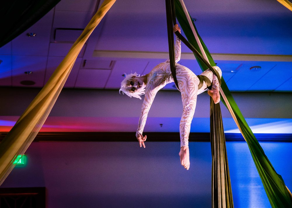 Cirque_Du_Honeywell-13.jpg