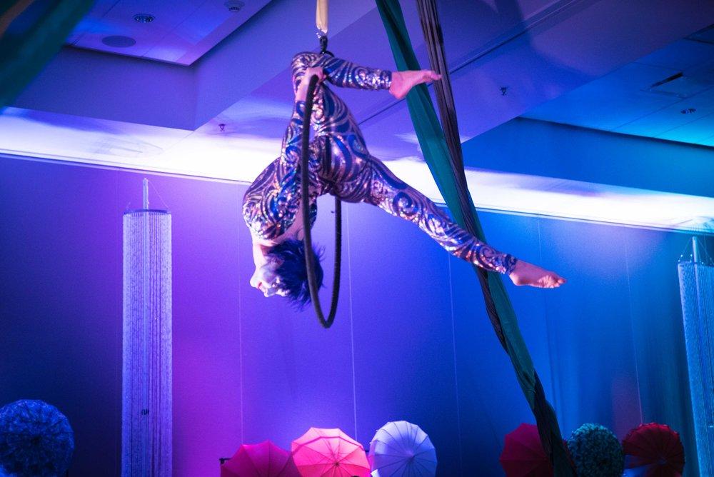 Cirque_Du_Honeywell-25.jpg
