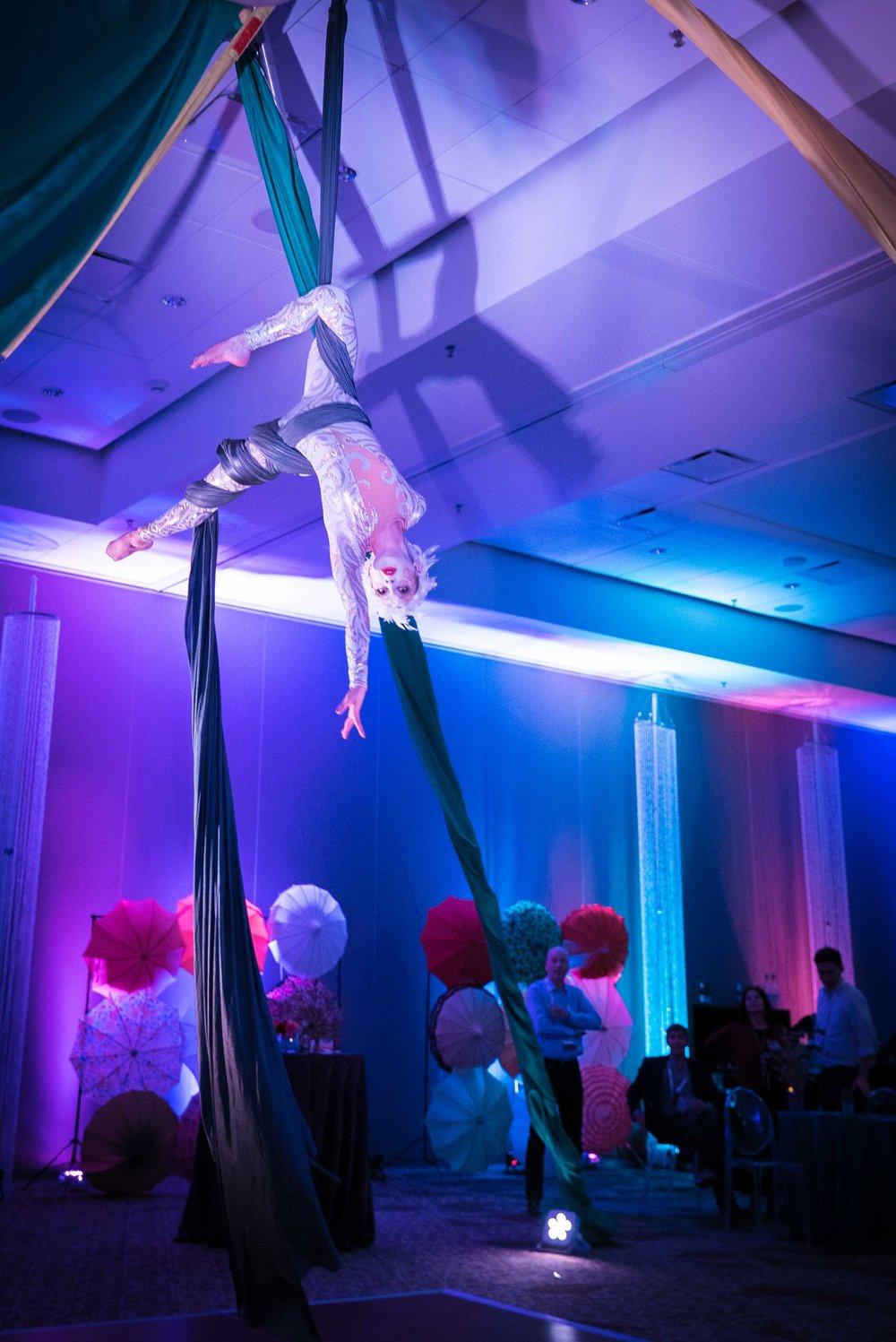 Cirque_Du_Honeywell-38.jpg