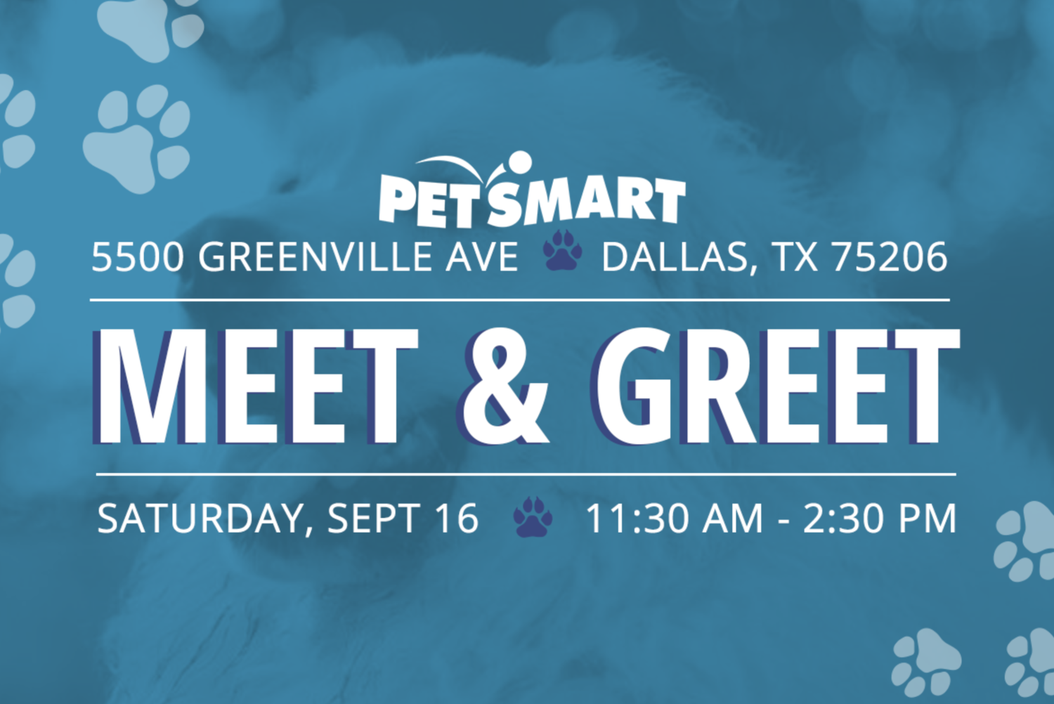 PetsMart Meet & Greet — SPIN Rescue Group