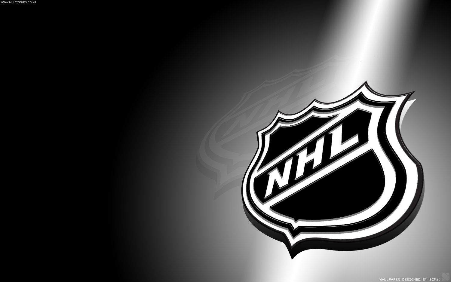 What Is The Top Stick Used By Nhl Defensemen Geargeek Has The
