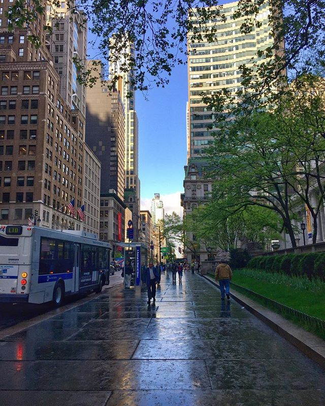 Fifth Avenue after the rain.