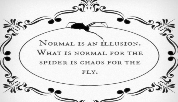 normal for the spider.jpg