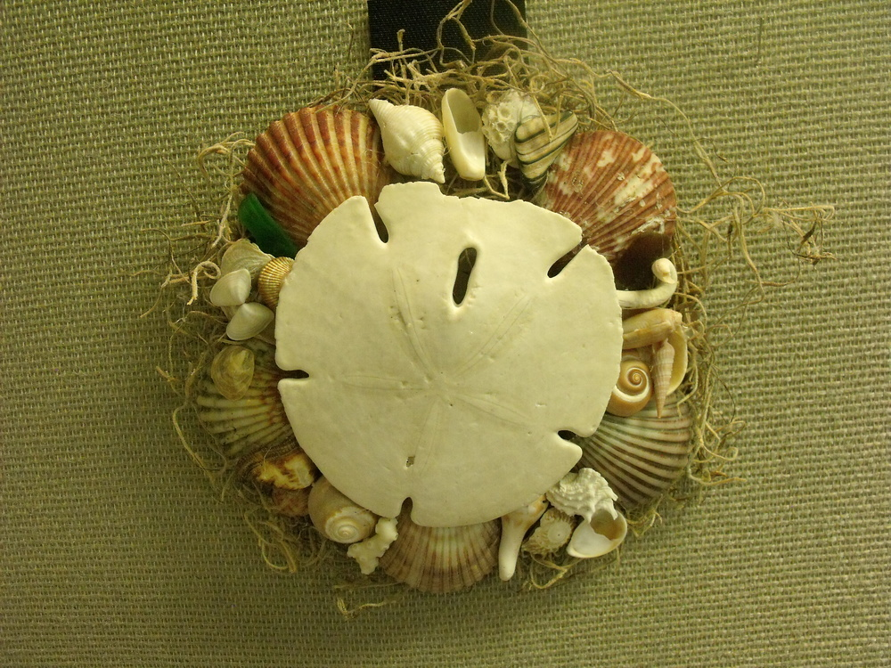 Sand Dollar wall decoration by Sarah Singer  $25