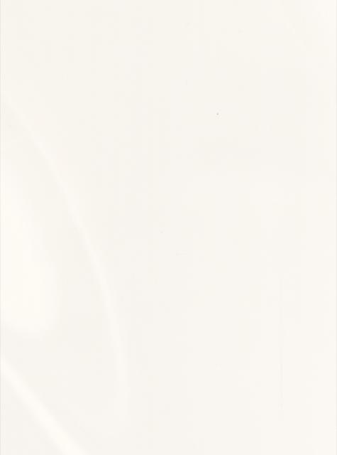 Venaro White