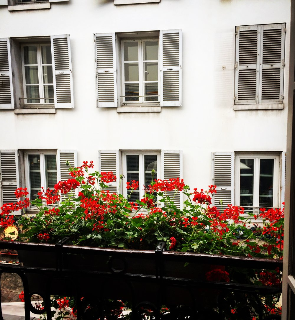 View from a bathroom in Montmartre, Paris, France.