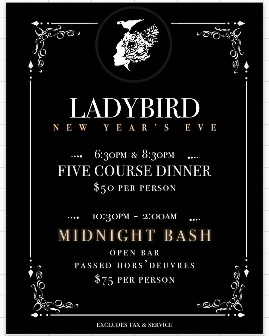 Ladybird New Years Eve Banner.jpg