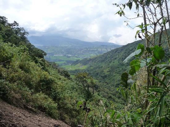 reserva pasochoa (1).jpg