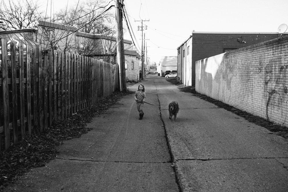 Little boy walking dogs in alley.