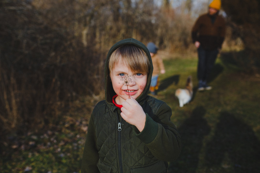 Boy with dandelion over his face.
