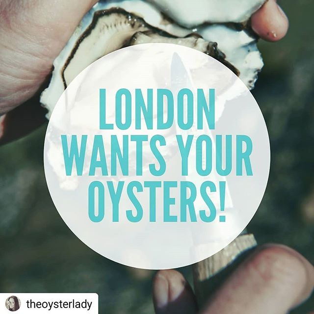 #Repost @theoysterlady • • • • • Calling all Oyster Producers!  Do you want a brilliant platform for promoting your product and showcasing oyster culture to one of the world's most famous capital cities?  English Producers Irish Producers Scottish Producers French Producers Canadian Producers  Anyone who can import to the UK, We have a very special opportunity to join us at a famous London landmark amidst the @londonoysterweek spotlight on oyster culture.  Last year we had sell out events and gained nearly £1million in publicity for oyster farmers, oyster venues and the culture that we love.  Get in touch asap to secure a place.  Looking forward to hearing from you! . . . . . #oysters #oysterfarmers #loveoysters #oysterproducers #oysterpromotion ##oysterculture #oysterrestoration #oysterrevolution #london #seafood #eatmoreoysters #ostras #oester #oesterreich #kamenica #ústřice #østers #osteri #auster #ostrica #ostryga #stridie #牡蠣 #蚝 #στρείδι