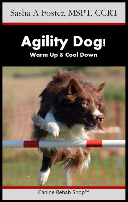 Agility Dog Branded Kindle.jpg