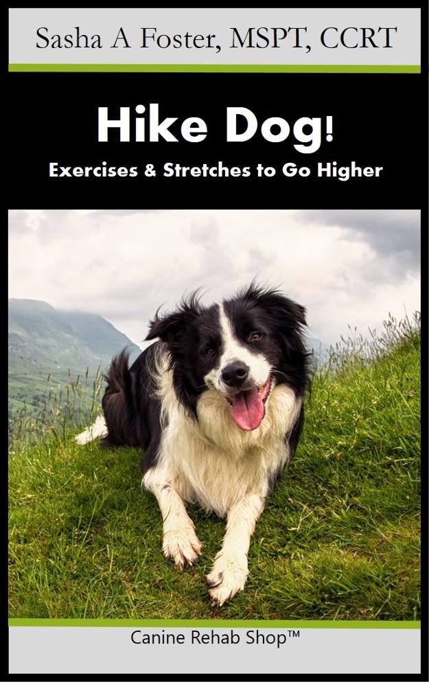 Hike Dog Branded Kindle.jpg
