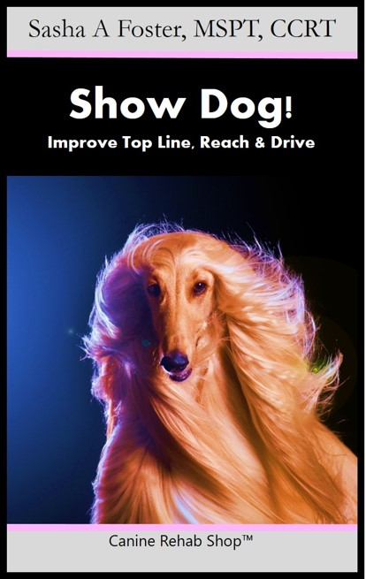 Show Dog Branded Kindle.jpg