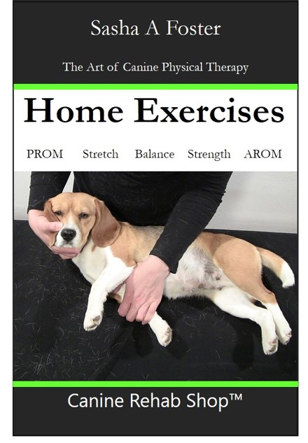 Home Exercises Thumbnail.jpg