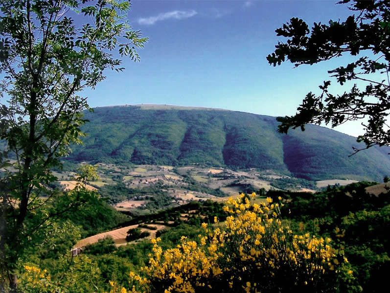Subasio Park, Assisi, Italy. Photo source: Parco del Monte Subasio