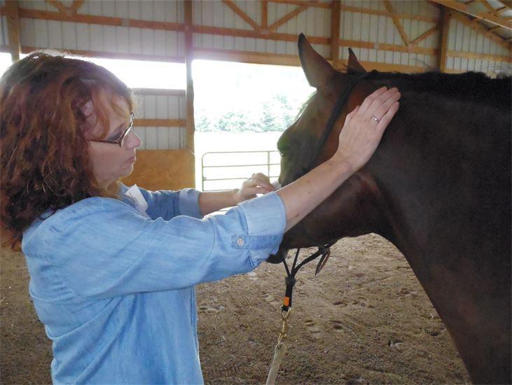 ladyandhorse.jpg