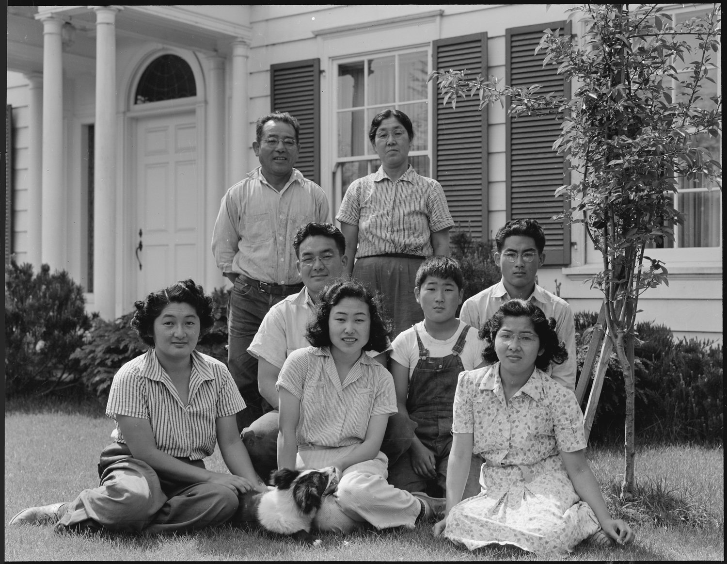 Mountain View, California. Members of the Shibuya family are pictured at their home before evacuation. The father and the mother were born in Japan and came to this country in 1904. At that time the father had 0 in cash and a basket of clothes. He later built a prosperous business of raising select varieties of chrysanthemums which he shipped to eastern markets under his own trade name. Six children in the family were born in the United States. The four older children attended leading California Universities. Evacuees of Japanese ancestry will be housed in War Relocation Authority Centers for the duration.