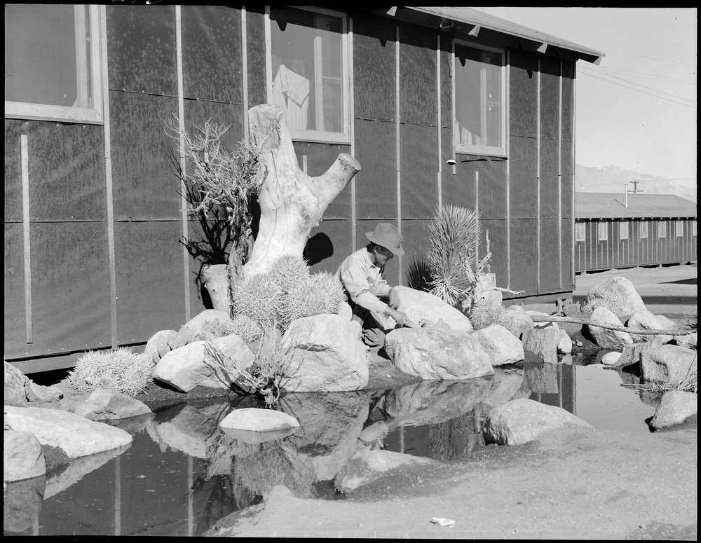 June 30, 1942 — Manzanar Relocation Center, Manzanar, California. William Katsuki, former professional landscape gardener for large estates in Southern California, demonstrates his skill and ingenuity in creating from materials close at hand, a desert garden alongside his home in the barracks at this War Relocation Authority center.