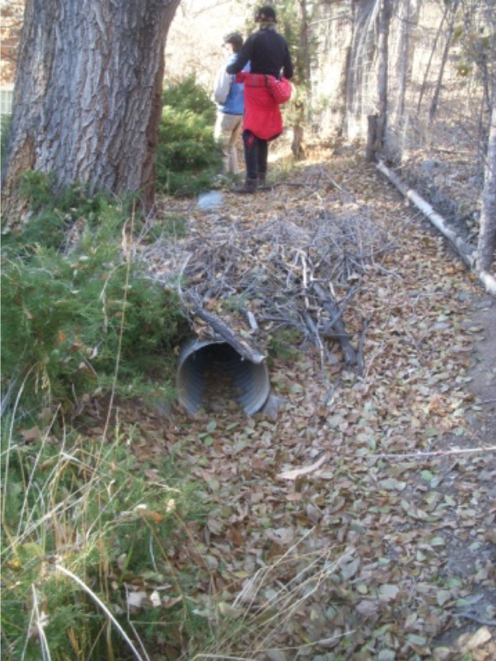 A culvert in the acequia.  photo by the Deborah and Jon Lawrence