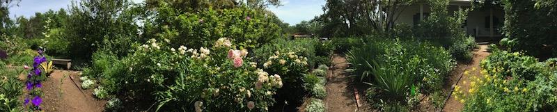 El Zaguán Garden, June 6, 2018