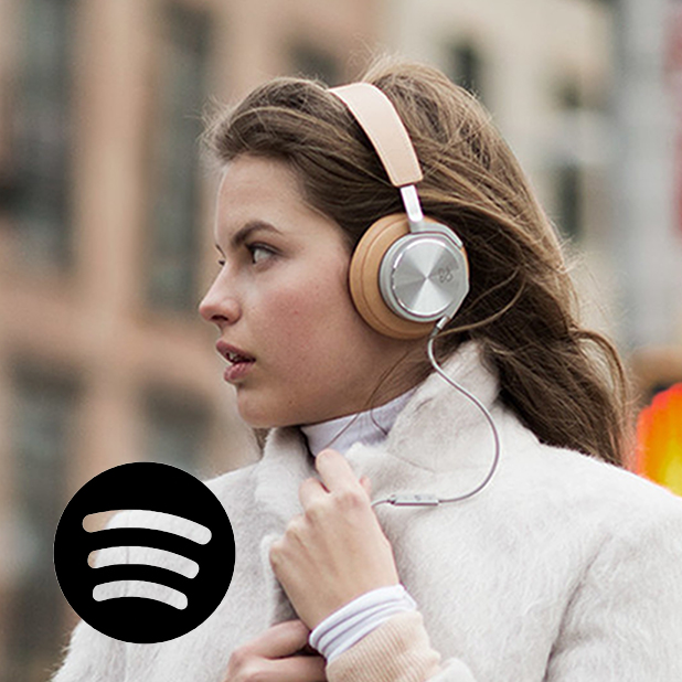 Spotify Flow