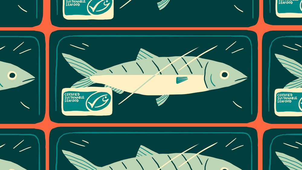 """The Seafood Charter"", an animation for WWF 