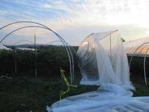 Frame for 60g netting