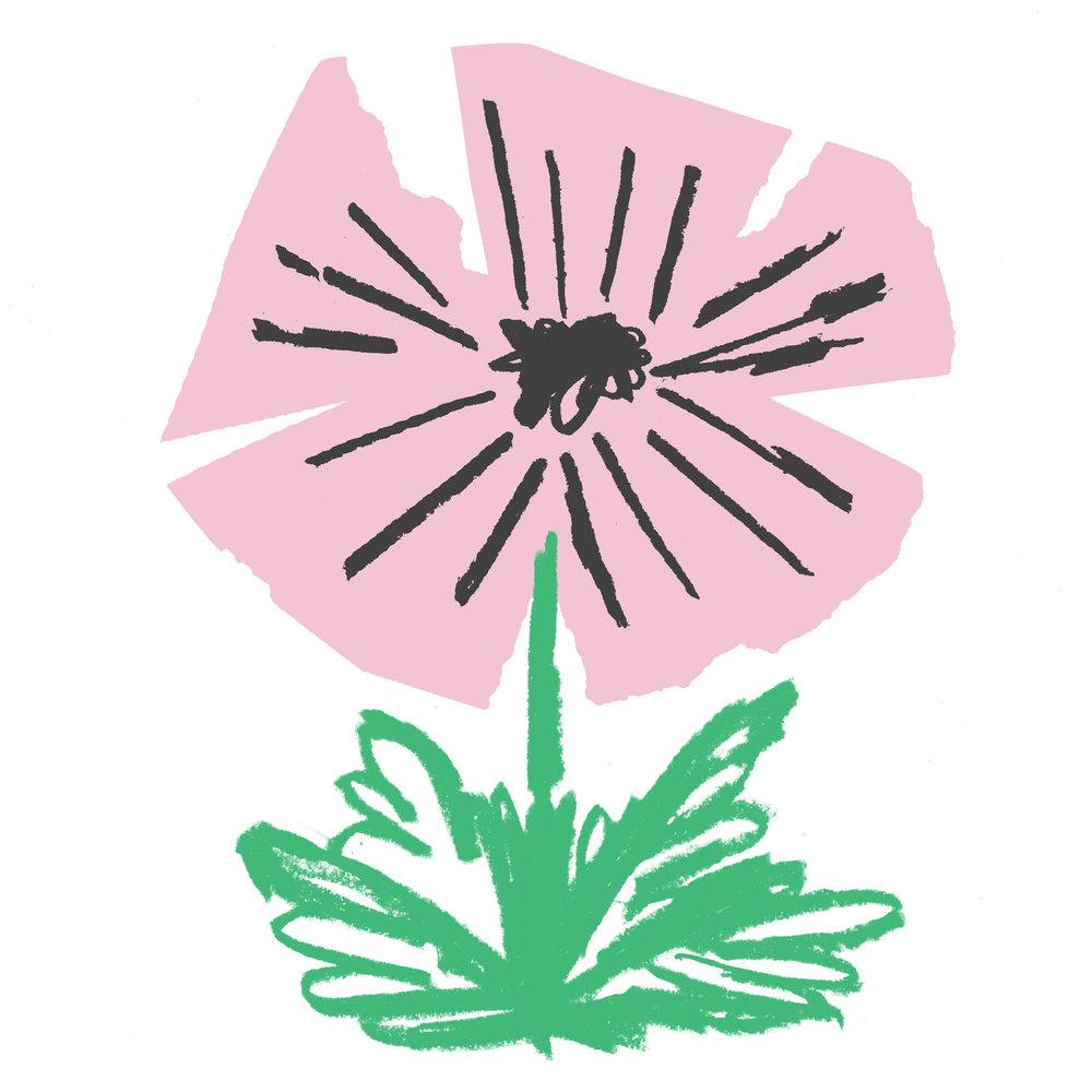 scorpio_geranium.jpg
