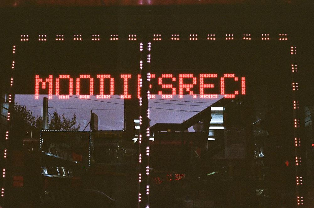 67090035.JPG