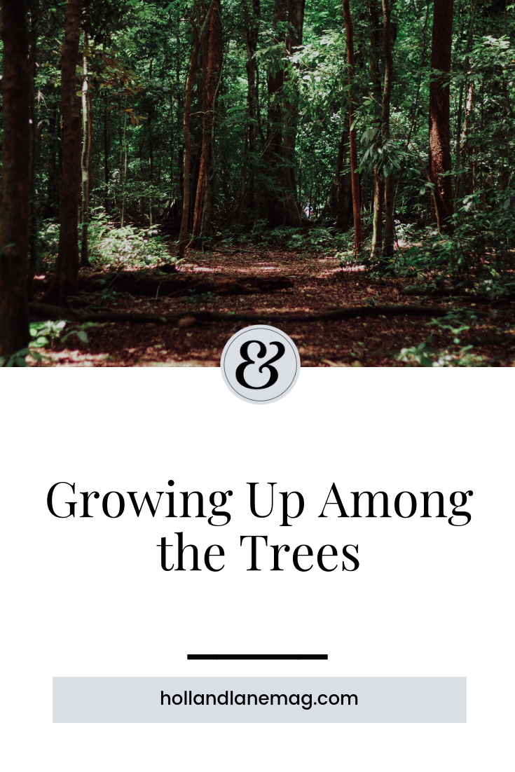 Spending time with her dad among the trees helped one woman see the beauty and purpose in our lives. Click to read more at hollandlanemag.com