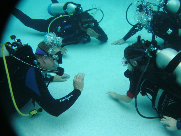 Sample: pic of Dive Instruction above...